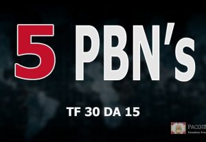 Homepage PBN Backlinks TF 30+ – With UNIQUE Content