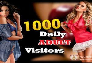 Daily Adult Traffic To Your Website