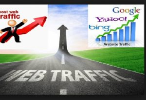 I Will Drive 1000 Real Targeted Traffic To Your Hotel And Travel Site