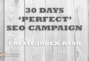 Skyrocking Your Website Rankings – 30 days SUPREME SEO PACKAGE