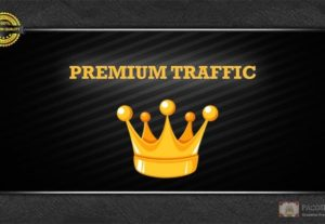 PREMIUM Targeted Visitors/Traffic To Your Website