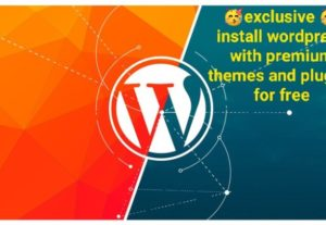 I will Install wordpress with premium themes and plugins for free