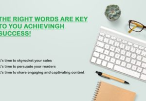 I will write a high quality SEO Article or Blog of 1000 Words posts in 24 hours