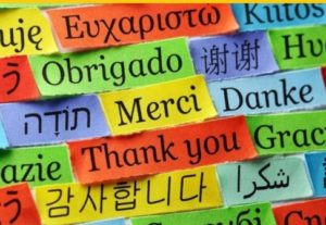 I will translate all kind of texts between English, French, Spanish and Arabic